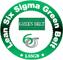 Logo Lean Six Sigma Green Belt